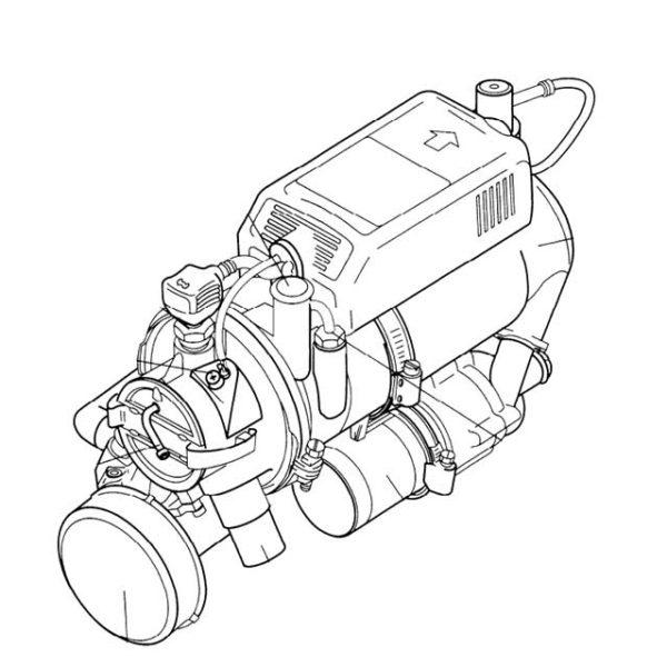 BBW 46